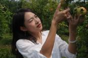 """女大学生张锦超扎根农村创业 巾帼不让须眉  让废弃矿坑变身""""花果山"""""""