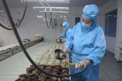 山东泰斗养生科技公司 科技创新赢得市场